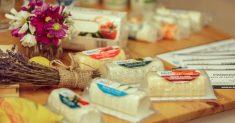 brânzeturi lactIQ
